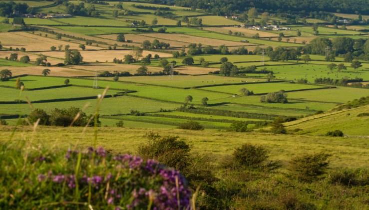 Landschaft England