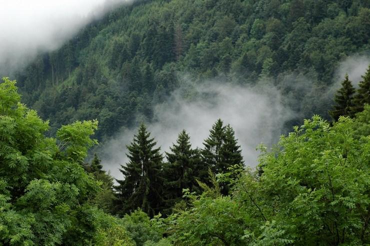 Deutschland Natur