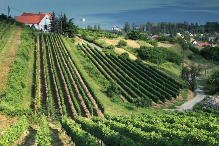 Ungarn Landschaft