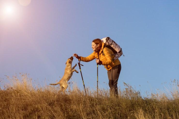 Frau beim wandern mit ihrem Hund